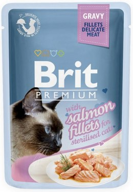 BRIT POUCH GRAVY STERILISED FILLETS SALMON 85 g