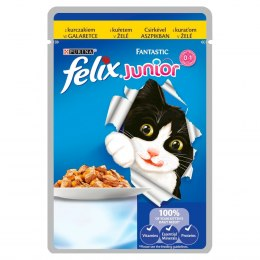 FELIX FANTASTIC Junior Kurczak 100g